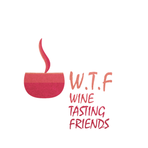 WTF Wein Weinglas Weinflasche Geschenk Idee