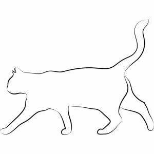 gemalte katzenbilder