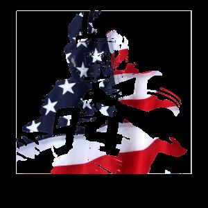 Football Spieler mit Amerika Flagge