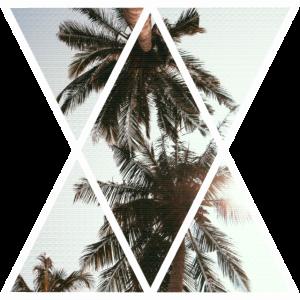 Palmen Dreiecke