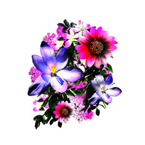 Blumentopf Bunte Blumen
