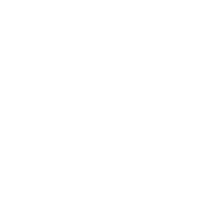 Tattoo Style Tiger T- Shirt