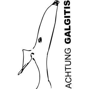 Galgitis