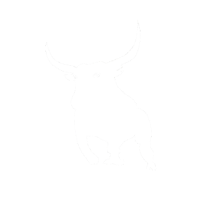 Stier Sternzeichen Stierkampf Motiv