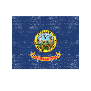 Love my state Idaho State Flag T Shirt
