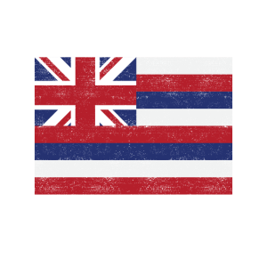 Love my state - Hawaii State Flag T Shirt