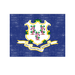Love my state Connecticut State Flag T Shirt