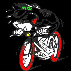 E-Bike Tretter