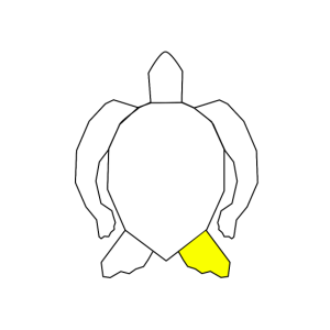 abstract turtle (yellow)