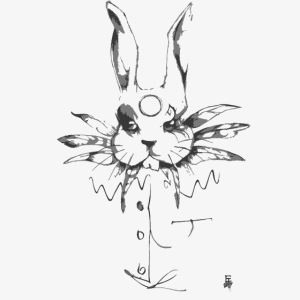 crazy rabbit