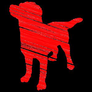 Gestreifter Hund