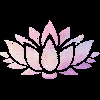 Lotus Blume ombre