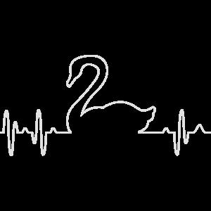 Schwan swan EKG heartbeat