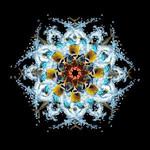 tropischer fischiger Mandala