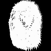Zwei gesichtigter Löwe - Weiß