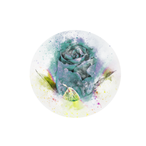 Rose - Wasserfarben - Geschenkidee