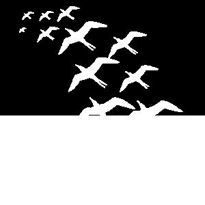 Vögel die Wegfliegenn