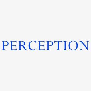 PERCEPTION CLOTHES BLEU