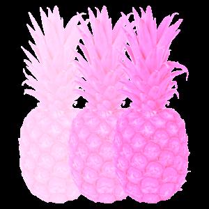 Pinke Ananas Style Trend