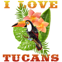 Ich liebe Tukane - Tukan auf einem Ast
