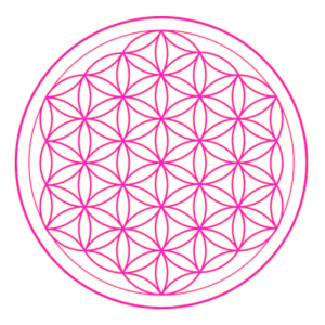 Blume des Lebens pink