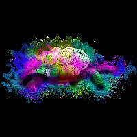 schildkrote, Kunst, Wasserfarbe