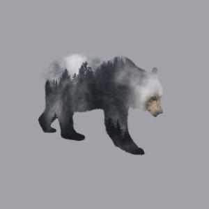 Braunbär - Wald Doppelbelichtungs-Effekt