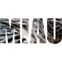 Miau mit Fell, Tigerkatze