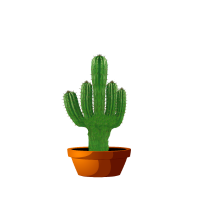 Kaktus Botanik Geschenk Fuctus