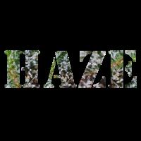 HAZE Hanf Collection