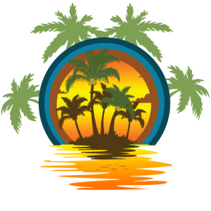 summer palm trees sunset