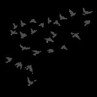 Handgezeichnete Vögel