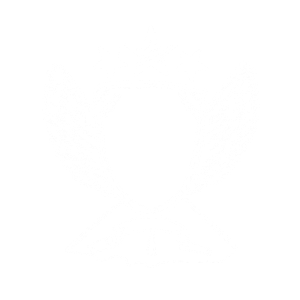 10. Geburtstag T-Shirt Motiv