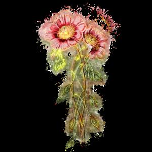 Blume Pflanze hell glühend
