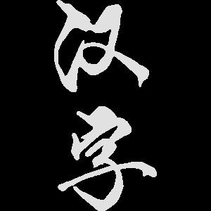 HAN ZI (wörtlich: Chinesisches Schriftzeichen)