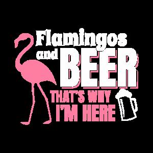 Flamingos und Bier