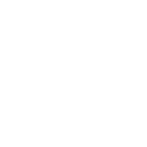 Sonnenblume weiß