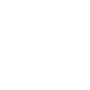 Polygon Elefant