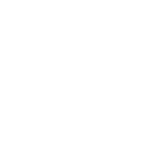 Happy little Camper