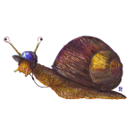 Hip Hop Snail