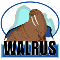 Walross der Seekuh