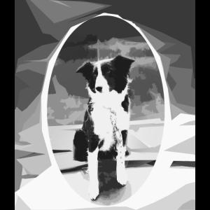 Potaler Hund