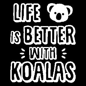 Koala - Koalabär