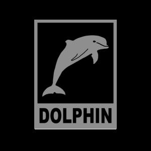 eleganter Delphin