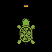 Magische Schildkröte