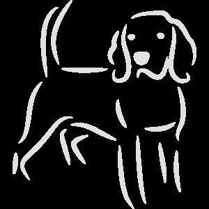 Beagle Zeichnung in weiß