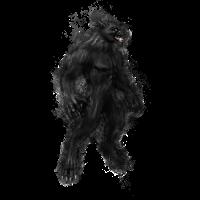 Werwolf Werwölfe hell glühend