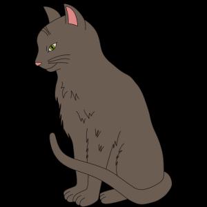 Katze 2 farbig