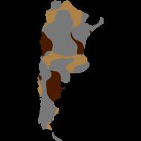 ARGENTINIEN / ARGENTINIA - MAP - CAMO / CAMOUFLAGE