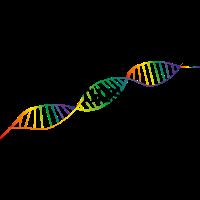Born this way - Regenbogen-DNA